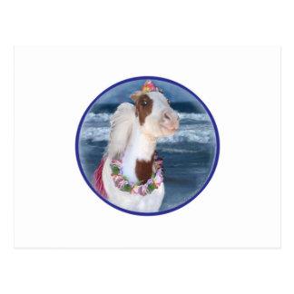 Cherry mini horse at beach postcard