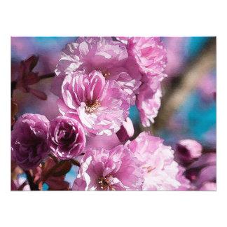 Cherry Petals Digital Art Print Photo Print