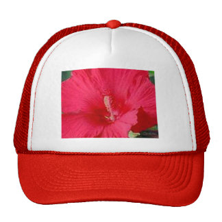 Cherry Red Hibiscus Fashion Mesh Hats