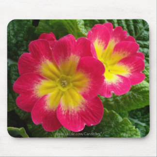 Cherry Red Yellow Primroses Mouse Pad