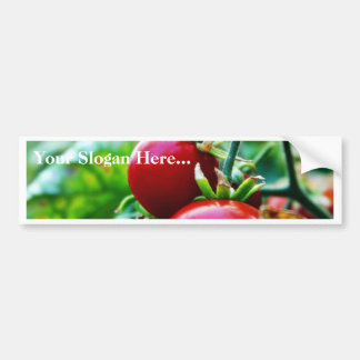 Cherry Tomatoes Bumper Sticker