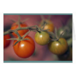 Cherry Tomatoes Cards