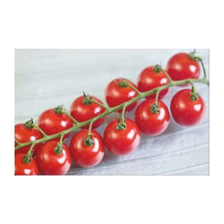 Cherry tomatoes on the vine For use in USA wrappedcanvas