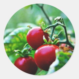 Cherry Tomatoes Round Stickers