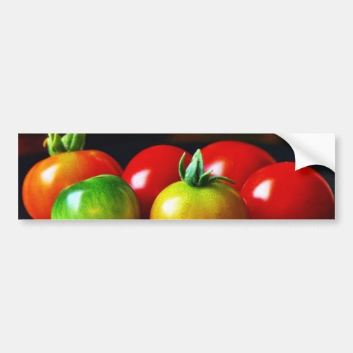 Cherry Tomatos Car Bumper Sticker