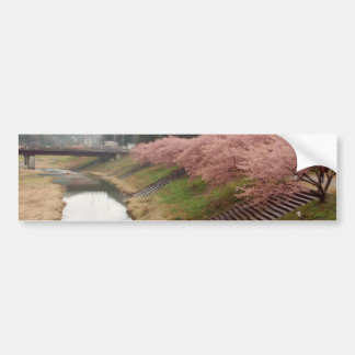 Cherry tree blossoms in Japan Bumper Stickers