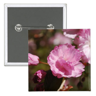 Cherry Tree Blossoms  Pin