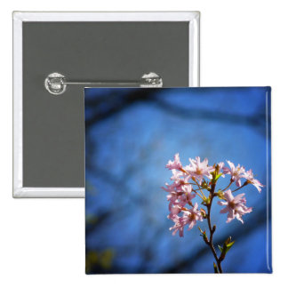 Cherry Tree Branch With Blossoms Pinback Buttons