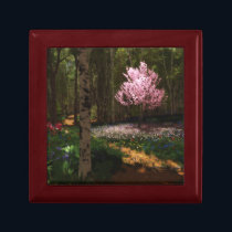 Cherry Tree Concerto Gift Box