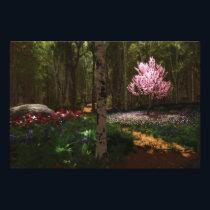 Cherry Tree Concerto Photo Print