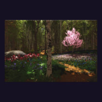 Cherry Tree Concerto Photo Print