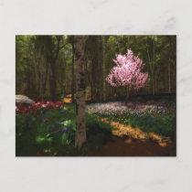 Cherry Tree Concerto Postcard