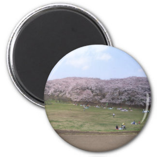 cherry tree in Japan 2 Inch Round Magnet