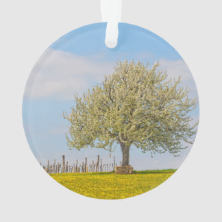 Cherry Tree In Spring Ornament