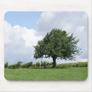 Cherry Tree In Summer Mouse Pad