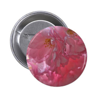 Cherry Trees Beautiful Pink Blossom Button Badge