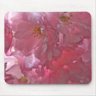 Cherry Trees Beautiful Pink Blossom Mouse Pad