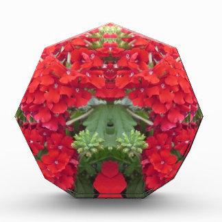 CherryHILL FUN Flower Bouquet NVN219 NavinJOSHI Award