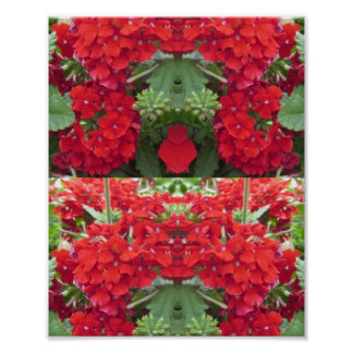 CherryHILL NJ Red Flower Bouquet NVN222 NavinJOSHI Print