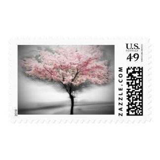 CherryTree Postage Stamp