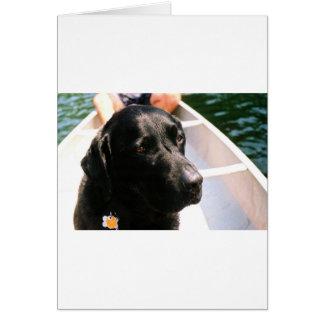 Chert Dog Card