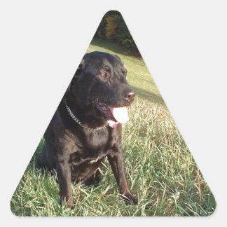 Chert Dog Triangle Sticker