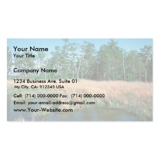 Chesapeake Bay, Eagle Nest Area Double-Sided Standard Business Cards (Pack Of 100)