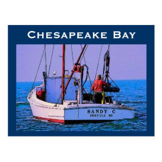 Chesapeake Bay Postcard