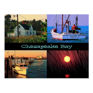 Chesapeake Bay Postcard
