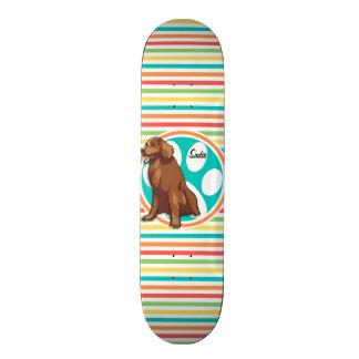 Chesapeake Bay Retriever; Bright Rainbow Stripes Skateboards
