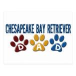 CHESAPEAKE BAY RETRIEVER Dad Paw Print 1 Post Cards