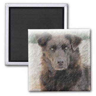 Chesapeake Bay Retriever Dog Magnet