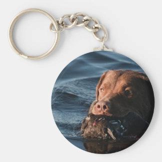 Chesapeake Bay Retriever Keychain