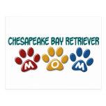 CHESAPEAKE BAY RETRIEVER Mom Paw Print 1 Postcards