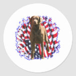 Chesapeake Bay Retriever Patriot Round Sticker