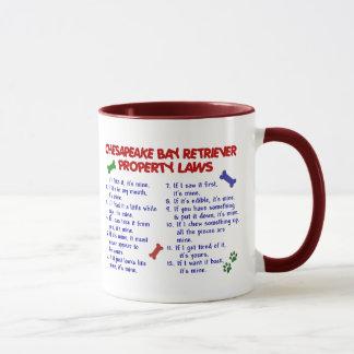CHESAPEAKE BAY RETRIEVER Property Laws 2 Mug