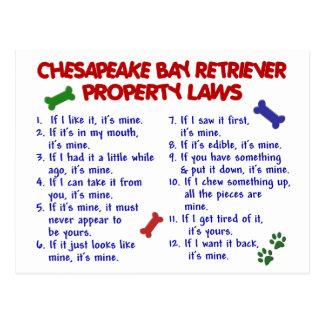 CHESAPEAKE BAY RETRIEVER Property Laws 2 Post Card