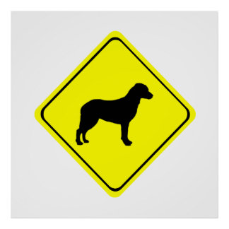 Chesapeake Bay Retriever Warning Sign Love Dogs Poster