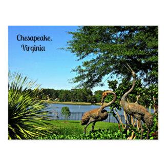 Chesapeake,  Virginia Postcard