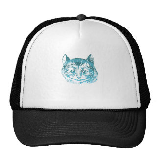 Cheshire Cat Striped Blue Mesh Hat