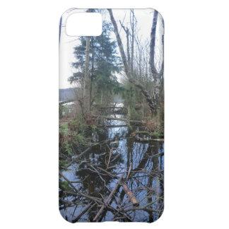 Cheshire Wetlands iPhone 5C Case