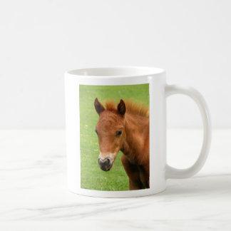 Chesnut foal, baby horse mug, present idea
