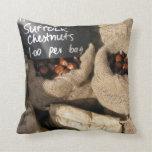 Chesnuts Pillow