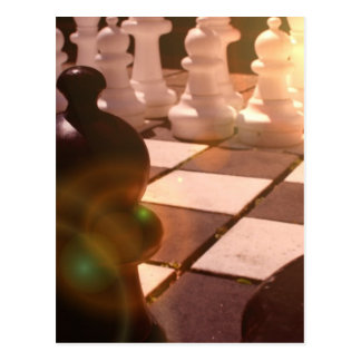 Chess Grandmaster Postcard