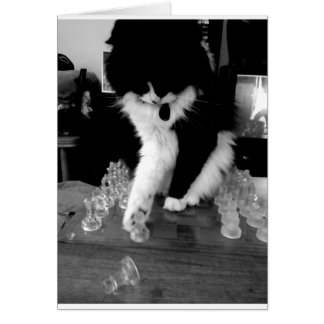 chess playing cat card