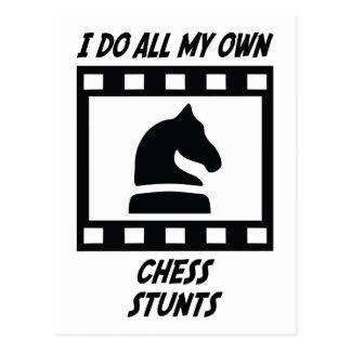 Chess Stunts Post Card