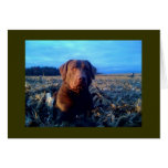 Chessie Greeting Card