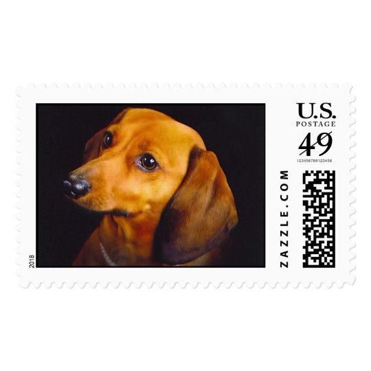 Chessie stamp