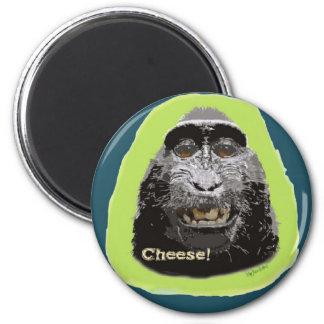 Chessy Monkey Magnet