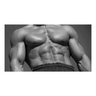 Chest & Abs Poster #1000